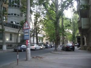 IMGP4943